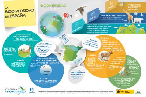 Infografía La Biodiversidad en España