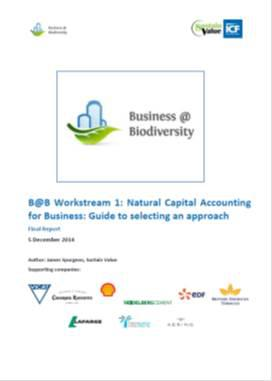 Natural Capital Accounting for Business