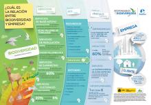 Infografía La relación entre Biodiversidad y empresa